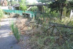 Il vialetto di accesso all'asilo